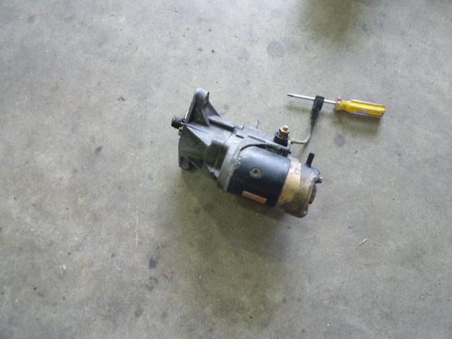 P1100186.JPG